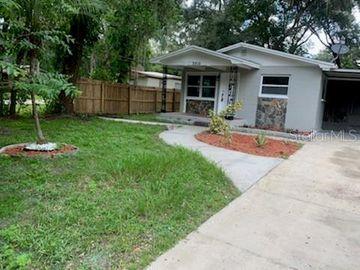 2916 IRENE STREET, Lutz, FL, 33559,