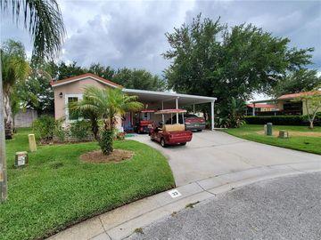 21251 SAN PABLO DRIVE, Land O Lakes, FL, 34637,