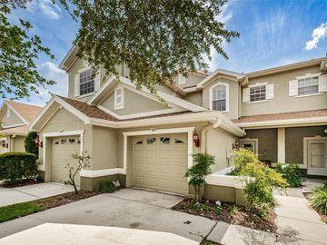 507 SPRING LAKE CIRCLE, Tarpon Springs, FL, 34688,