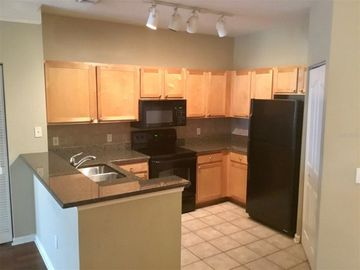 4207 S DALE MABRY HIGHWAY #12310, Tampa, FL, 33611,
