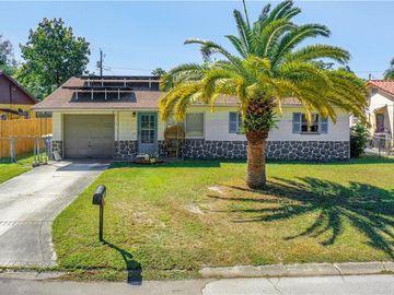 1419 JEFFORDS STREET, Clearwater, FL, 33756,