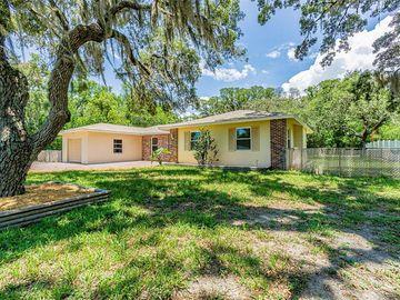 442 TRYON CIRCLE, Spring Hill, FL, 34606,