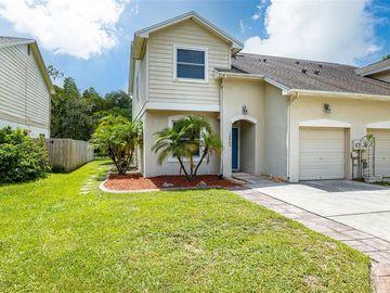 16862 LE CLARE SHORES DRIVE, Tampa, FL, 33624,