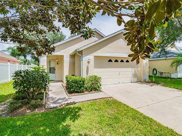 1703 MEADOW OAK LANE, Tarpon Springs, FL, 34689,