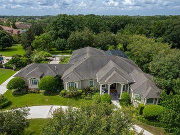 2517 WILDLIFE RUN, Lutz, FL, 33559,
