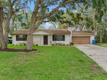 8802 HEATHER BOULEVARD, Weeki Wachee, FL, 34613,
