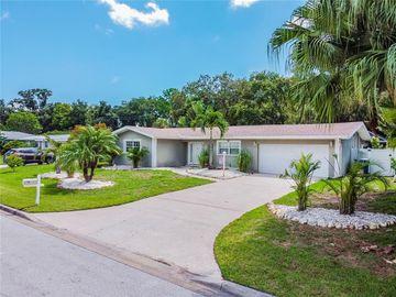 291 OVERBROOK STREET E, Largo, FL, 33770,