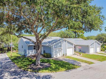 39650 US HIGHWAY 19 N #311, Tarpon Springs, FL, 34689,