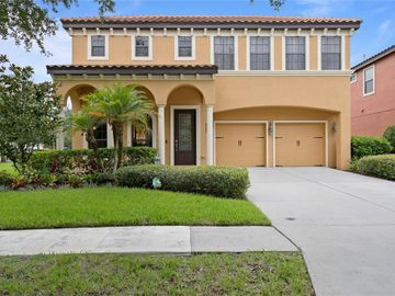 20302 HERITAGE POINT DRIVE, Tampa, FL, 33647,