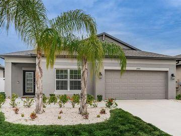 11454 ALACHUA CREEK LANE, Riverview, FL, 33579,