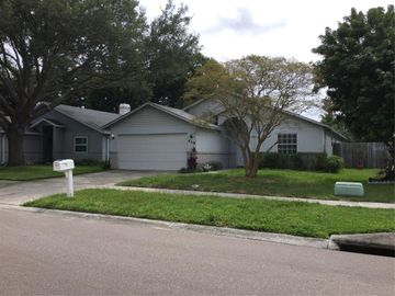 419 FEATHER TREE DRIVE, Clearwater, FL, 33765,