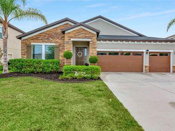32108 WATOGA LOOP, Wesley Chapel, FL, 33543,