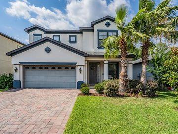 15246 ANGUILLA ISLE AVENUE, Tampa, FL, 33647,