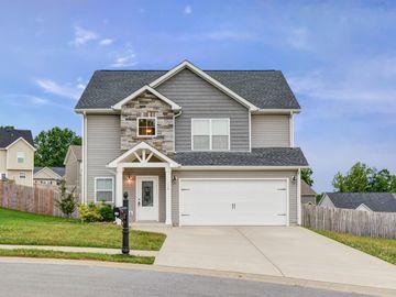 113 Woodtrace Ct, Clarksville, TN, 37042,