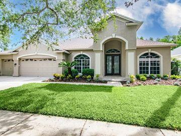 4802 MIRABELLA PLACE, Lutz, FL, 33558,