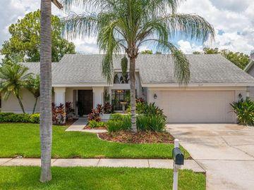 3117 GLENRIDGE DRIVE, Palm Harbor, FL, 34685,