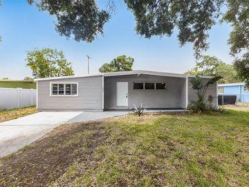 1337 WINDSOR WAY, Tampa, FL, 33619,