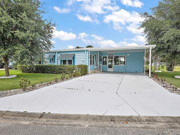 2111 CANOPY CIRCLE #139, Zellwood, FL, 32798,
