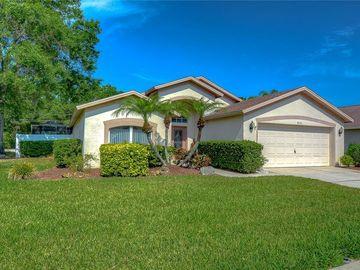 4115 MARLOW LOOP, Land O Lakes, FL, 34639,