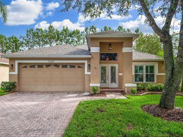 16245 NOTTINGHAM PARK WAY, Tampa, FL, 33647,