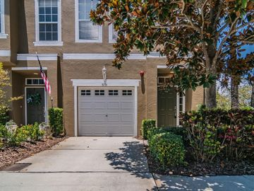 3056 POINTEVIEW DRIVE, Tampa, FL, 33611,