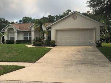 4142 EAGLE FEATHER DRIVE, Orlando, FL, 32829,