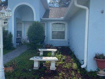 12723 N OLA AVENUE N, Tampa, FL, 33612,