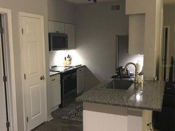 1810 E PALM AVENUE #4202, Tampa, FL, 33605,