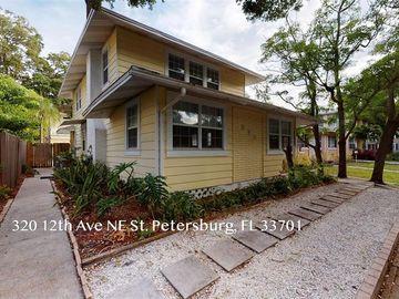 320 12TH AVENUE NE, St Petersburg, FL, 33701,
