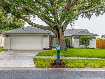 1719 BELL RANCH STREET, Brandon, FL, 33511,