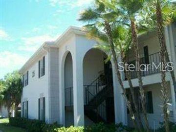 10376 CARROLLWOOD LANE #255, Tampa, FL, 33618,
