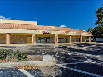4460 66TH STREET N, Kenneth City, FL, 33709,