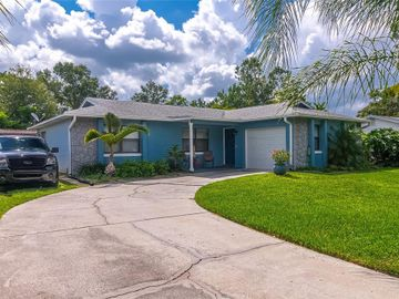 1433 NIOBE COURT, Orlando, FL, 32822,