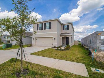 10483 PENNY GALE LOOP, San Antonio, FL, 33576,