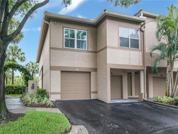1031 NORMANDY TRACE ROAD, Tampa, FL, 33602,