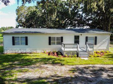 13121 LEWIS GALLAGHER ROAD, Dover, FL, 33527,