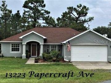 13223 PAPERCRAFT AVENUE, Weeki Wachee, FL, 34614,