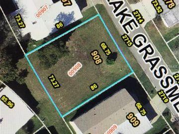 2715 LAKE GRASSMERE CIRCLE #908, Zellwood, FL, 32798,