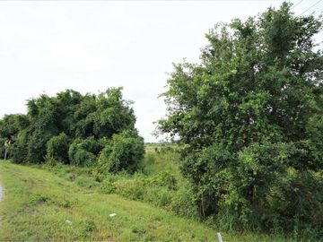 None VILLA CITY ROAD, Groveland, FL, 34736,