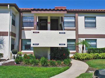 3447 FLOSSMOOR AVENUE #203, Orlando, FL, 32822,