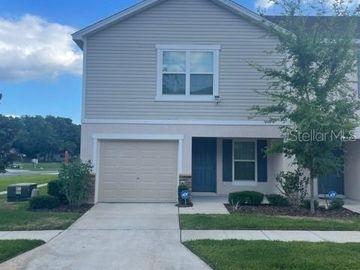 9511 ASHBURN RIVER LANE, Tampa, FL, 33610,