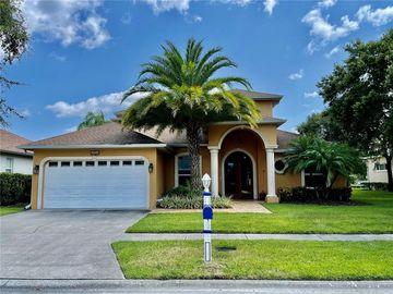 4238 SANDY SHORES DRIVE, Lutz, FL, 33558,
