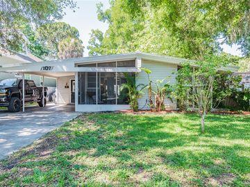 107 BUCKINGHAM AVENUE W, Oldsmar, FL, 34677,