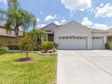 31422 BRIDGEGATE DRIVE, Wesley Chapel, FL, 33545,
