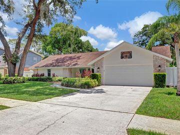 11505 NORVAL PLACE, Temple Terrace, FL, 33617,