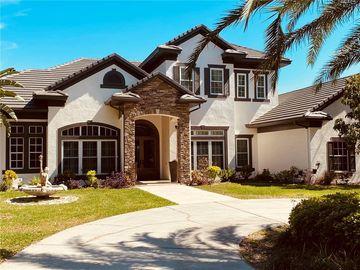 18205 PATTERSON ROAD, Odessa, FL, 33556,