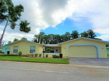 12002 BOYNTON LANE, New Port Richey, FL, 34654,