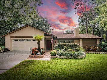 505 CLIFF DRIVE, Temple Terrace, FL, 33617,
