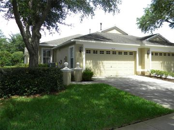 19127 WHITE WING PLACE, Tampa, FL, 33647,