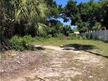 None S MARTIN LUTHER KING JR AVENUE, Clearwater, FL, 33756,